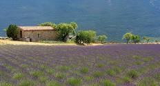 Soirée provençale
